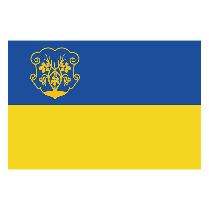 Знамено міста Ужгород