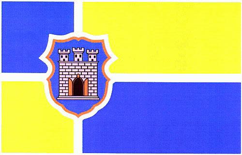 Знамено міста Житомир