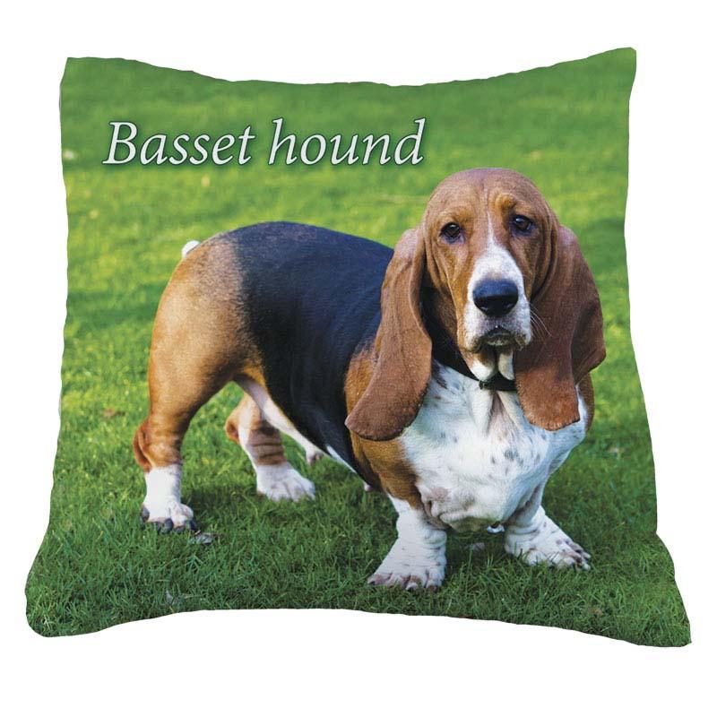 Бассет хаунд: фото собаки, описание породы, цена щенков и уход   800x800